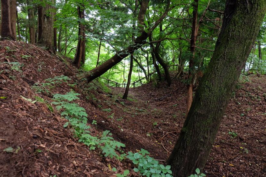 主郭北の横堀。柵より外は崖