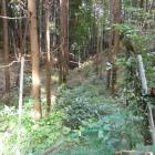 奥にある竹藪に土塁・堀形状が