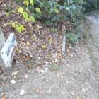 合流した龍潭寺からの道は堀底道になってました