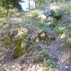 唯一残ったとされる石垣跡