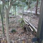 竹藪と同化した西の丸