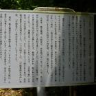 大善寺と衣笠城の関係書かれた解説