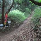 以前雪道で登るの苦労した竪堀道