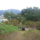 鶴峰城から堀切を挟んで猪苗代城の眺め