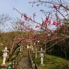 桜の名所でもあります