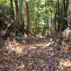 山頂付近の竪堀