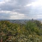 南方の眺望