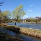 天然の堀となる御所沼