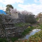 極楽橋の再建工事中