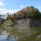 毘沙門郭東南隅の石垣と水堀の花筏