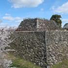 城址散策道からの本丸天守台と桜