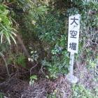 登城口脇の大空堀は藪の中・・・