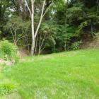 芝の先が落ち込んで堀につながってます