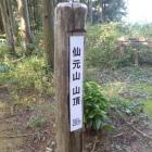 仙元山山頂。。。ここから下ります