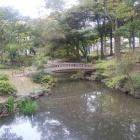 下茶屋公園の伝・堀跡