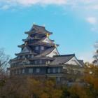 遠くから見た岡山城下