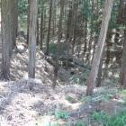 出曲輪の堀