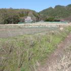その北竪堀から東に延びる横堀