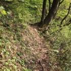 松の丸までの細小道