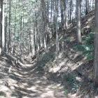 Ⅱ曲輪堀と登り城塁