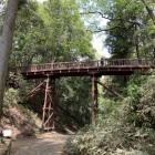本丸への木橋 引橋 下から
