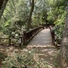 本丸への木橋 引橋