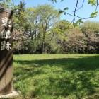 三の丸(東館)跡。周囲を腰曲輪が取り巻く