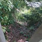 二の門東部の竪堀