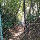 二の郭の端からフェンス越しに堀が続いていました