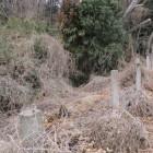 藪の下が堀になっている場所もあり踏み込み危険