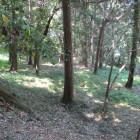 碑石のすぐ脇の下段に帯曲輪