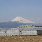 蛭ヶ小島から見た富士山