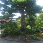 長町武家屋敷2