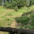 木橋から見た堀、土塁