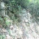 流紋岩の節理が石垣のよう