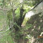 城南側現存土塀外側