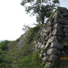 二の丸西側石垣