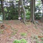 本丸南隅櫓跡