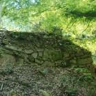 釣井の段の上のライゲンガ丸石垣