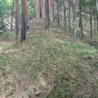 竪堀と尾根