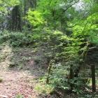 井戸郭(釣井の段)の石垣跡