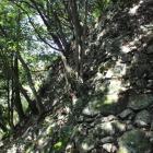 木に侵食される石垣