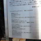 宮沢賢治の歌。3枚目の写真の右下にあり