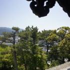 懸魚と笏谷石の屋根