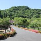 鏡山公園より望む