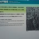 安閑天皇陵南の説明板