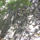 本丸南側拡張部分石垣