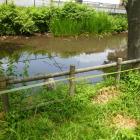 水堀は池へ繋がってました