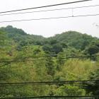 本丸から見た鳶ヶ巣山砦