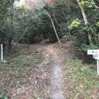 勝山登山口(分岐点)左へ進む